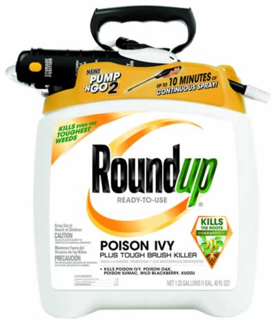 RoundUp for poison ivy is a glyphosate herbicide